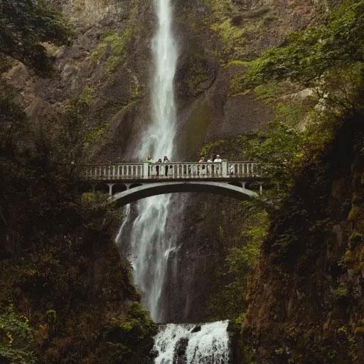 bridging-divide